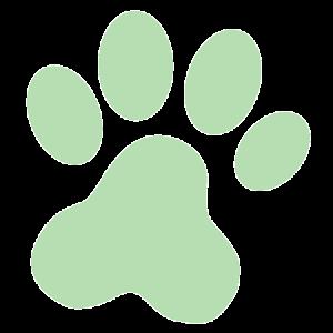 Green Footprint2-01
