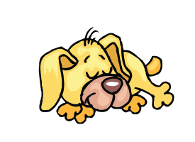 Bellyrubs Doggie Daycare